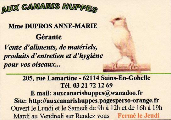 Aux Canaris Huppés